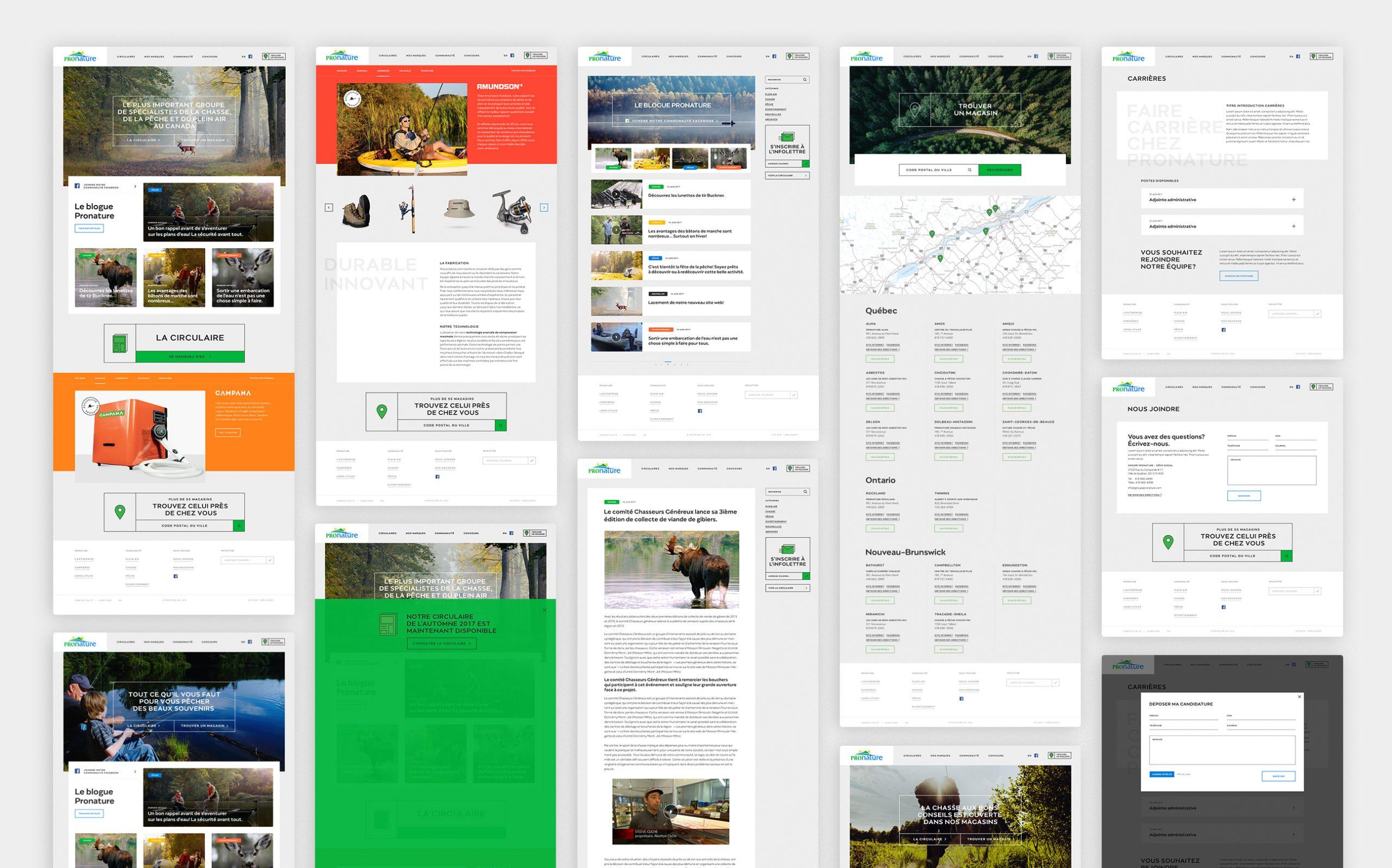 Turbulences-projet-pronature-site-web-desktop-pages-blogue